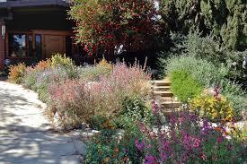 southern california front yard gardens
