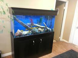 office fish tank. This Is A Great Way To Improve The Atmosphere In Office, And Of Course Tax Write Off! Office Fish Tank .