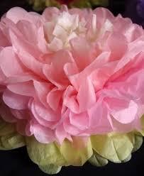 Tissue Paper Flower Decor Paper Flowers And Decorative Paper Pinwheels For Sale
