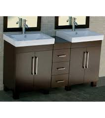 603939 Double Cabinet Bathroom Vanities Vanity Sink Evp295 60