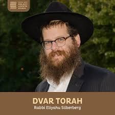 Dvar Torah, Rabbi Elyahu Silberberg