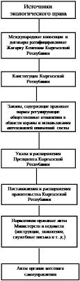Дипломная работа Проблемы экологического права Кыргызской Республики Наконец в числе источников экологического права довольно большое место занимают международно правовые акты конвенции декларации соглашения и т д