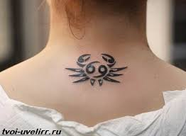 Tetování Na Ruce Je Znamení Zvěrokruhu člověka Tattoo Znamení