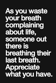 Quotes About Appreciating Life Interesting Quotes About Appreciating Life And Health 48 Quotes