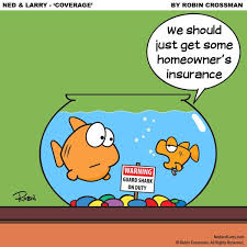 what s the quickest way to make your fish paranoid enough to home insurance just stick some shark signs in their home