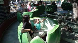 everyone rides in a giant artichoke