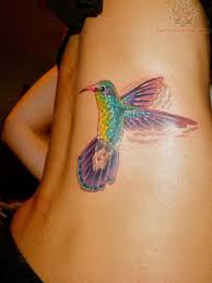 colorful bird tattoos tumblr. Wonderful Tumblr Tumblr Hummingbird Tattoo Throughout Colorful Bird Tattoos T