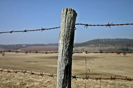 Fence Post Round Wood Fence Posts Post N Nongzico