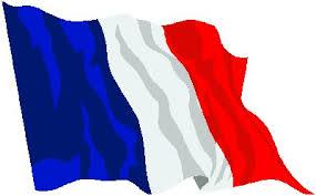 Résultats de recherche d'images pour «drapeau de france»