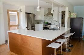 mid century modern kitchen idea