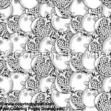 Fruit Pattern Pomegranate Coloring Page 1892 Ultimate Coloring