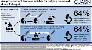 Procurement Biopsies in the Evaluation of Deceased Donor Kidneys | American  Society of Nephrology