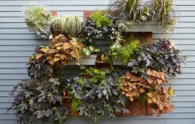 23 cool diy wall planter ideas for