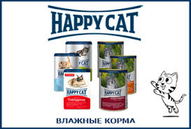 <b>Happy Cat</b>