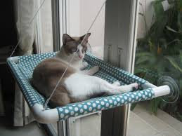 best cat window hammock