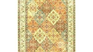 pet stain resistant rugs beige area rug