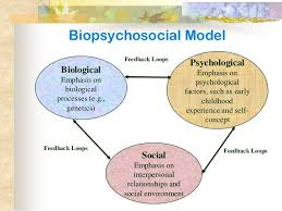 models of mental health illness biopsychosocial