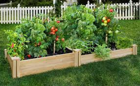 Greenes Fence panyCedar Raised Garden Kit