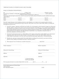 Medical Power Of Attorney Texas Template Form 2015 Word – Appswop