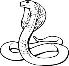 S Dessin Dessin A Colorier Serpent Cobra L L L L Duilawyerlosangeles