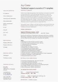 Help Desk Technician Resume Resume Format For Technical Support. technical support resume ...