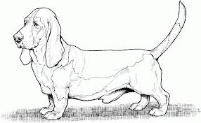 Dog Coloring Pages To Print Prairie Breed Printable Puppy Pals