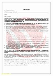 Resume Bullet Points Beautiful Bullet Point Resume Free Download
