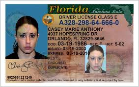 Florida - Template 27 Drivers License State Templates 306550 Of Download Station