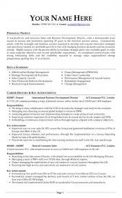 Professional Cv Experts Resume Examples Cv Examples
