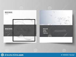 Flyer Formats Vector Layout Of Two Square Format Covers Design Templates