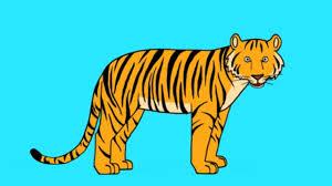 Apprends Dessiner Un Tigre En 3 Tapes Youtube