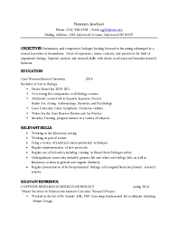 best resume templates 2015 resume examples templates free examples mccombs resume template