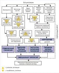 Реферат Ферменты микроорганизмов и их классификация Антигенная структура