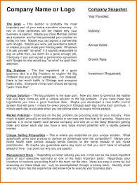executive summary example business executive summary template doc military bralicious co