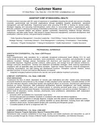 Relevant Experience Resume Unique Relevant Experience Resume Gallery Resume Format Examples 28