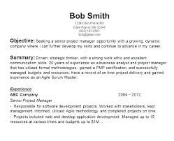Junior Project Manager Resume It Manager Resume Objective Hr Junior