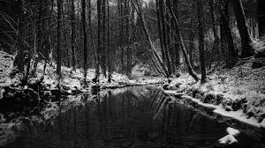 black and white nature wallpaper. Plain Nature In Black And White Nature Wallpaper R
