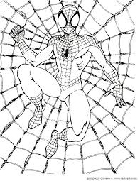 Small Picture 17 best spiderman images on Pinterest Drawing step Spiderman