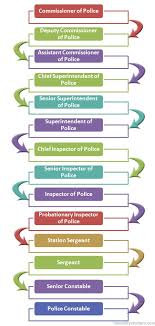 Hong Kong Police Force System Hierarchy Hierarchy Structure