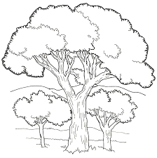 Small Picture Trees coloring 5 Free Coloring Page Site Coloring Home