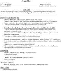 Entry Level College Student Resume Samples Meigenn Com