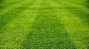 Soccer Field close up of grass soccer field GoalNation