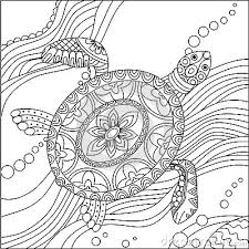 Small Picture turtle coloring pages for adults 28 images coloring pages