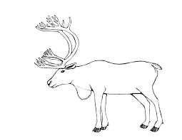 Small Picture Caribou 6 Animals Printable coloring pages