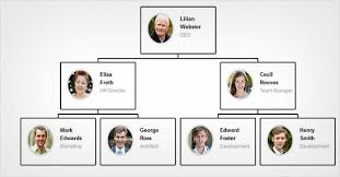 Ftc Organizational Chart How To Create Your Company Org Chart In Wordpress