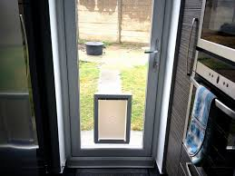 new dog flap in glass door dogs world