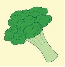 broccoli clipart. Exellent Broccoli Open  Intended Broccoli Clipart E