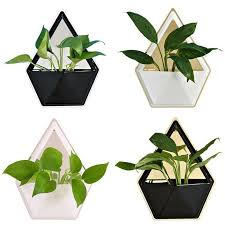 2021 acrylic flower pot iron plant