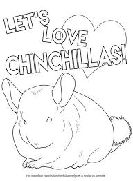 Small Picture 59 best Chinchilla Art images on Pinterest Chinchillas Animals