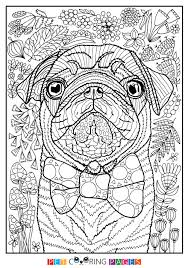 Small Picture Pug Coloring Page Sidney ZileArt